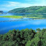 Welcome to your Knysna summer!