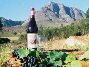 Garden Route wine